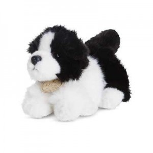 small-dog1