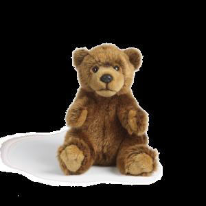 AN396+Brown+Bear+transparent
