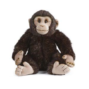 AN333+Chimp